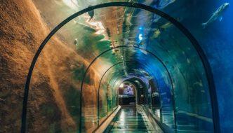 Fort Kijkduin aquarium